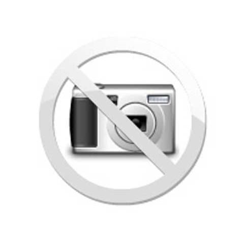 ContaGiro SCANIA Com logo 112HS