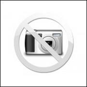 Conta Giro digital F1000